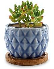 Mucihom Planta Maceta de Suculento con Bandeja de Bambú 8.5CM Cactus Maceteros de Ventana Cajas