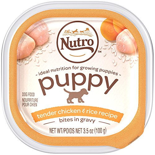 Nutro NATURAL CHOICE Small Breed Chicken Slices Canned Puppy Food, 3.5 oz. (Pack of 24)