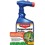BioAdvanced 701270A Effective Fungicide with Disease Prevention Fungus Control for Lawns, 32-Ounce