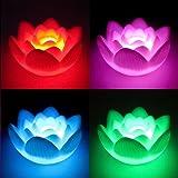 Amazon sodialr color changing led lotus flower romantic love mingruie hanbaili color changing led lotus romantic love mood night light mightylinksfo