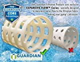 Guardian Pool/Spa Filters • Replaces Unicel
