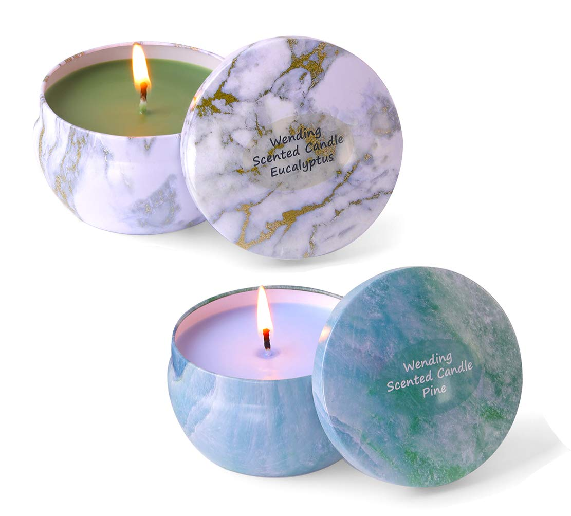 2 Scented Candles 8.1oz Each Long Burning to 45H Big Travel Tin Soy Wax Candle Strongly Smell to Create Mood & Enhance Atmospheres, Aromatherapy & Stress Relief for Women Men (Eucalyptus, Pine)
