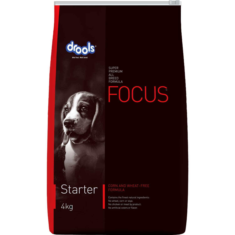 Buy Drools Focus Starter Super Premium Dog Food 4kg Online At Low Prices In India Amazon In