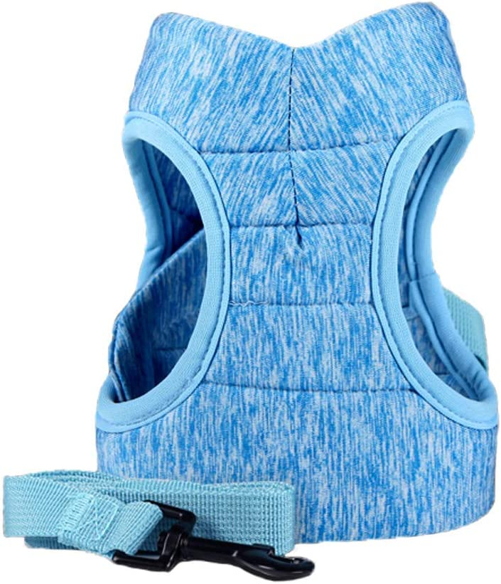 Anlitent Best Daily Dog Harness and Leash Set Non-Pulling Pet Harness for Small Medium Large Dogs Safe Dog Harnesses for Emotional Support Fabric Doggy Jogging Walking Escape Proof Large, Blue
