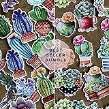 Succulent Colorful Cacti Bundle Sticker Pack (2 packs, 52 pcs)