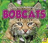 Bobcats (Animals in My Backyard)