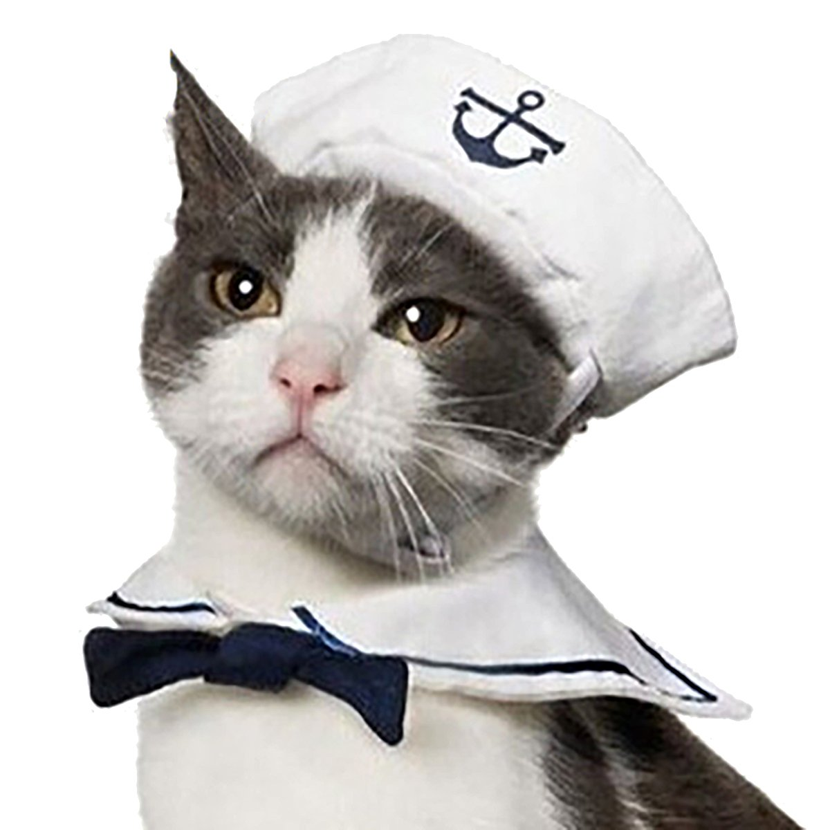 LiangGui Puppy and Cat Cosplay Peacock Costume, Pet Navy Sailor Hat 1 Pcs LG00AJ01SZ