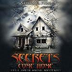 Secrets Come Home: Ettie Smith Amish Mysteries, Book 1 | Samantha Price