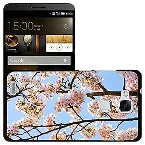 Print Motif Coque de protection Case Cover // M00154255 Árbol del resorte sucursal sucursales // Huawei Ascend Mate 7