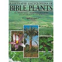Illustrated Encyclopedia of Bible Plants