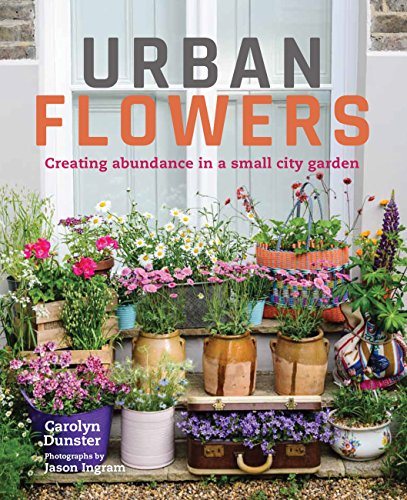 Cheap  Urban Flowers: Creating abundance in a small city garden
