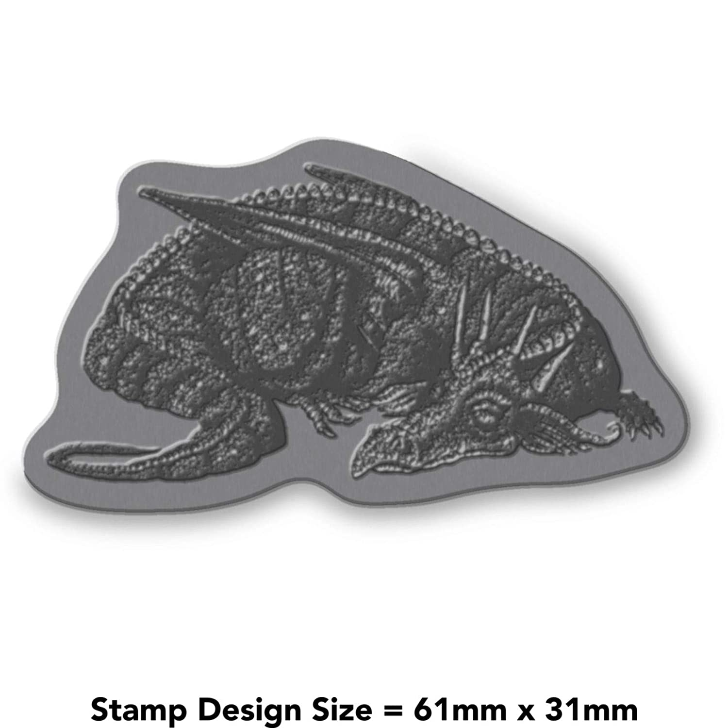 A8 Sleeping Dragon Unmounted Rubber Stamp RS00022150