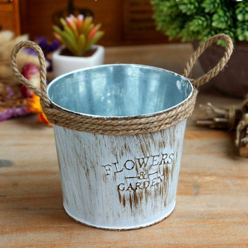 Vaso in Acciaio Ferro Metallo Starter 2 Pezzi Jug Shabby Chic Vaso di Fiori per la Decorazione Domestica
