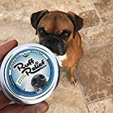 Organic Nose & Paw Wax Balm for Dogs