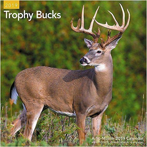 Trophy Bucks 2019 16 Month Wall Calendar Deer Hunting 12