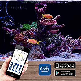 CURRENT USA Orbit Marine IC PRO Dual LED Reef Aquarium Light | Wireless Light and Pump Controller | Loop App – Bluetooth