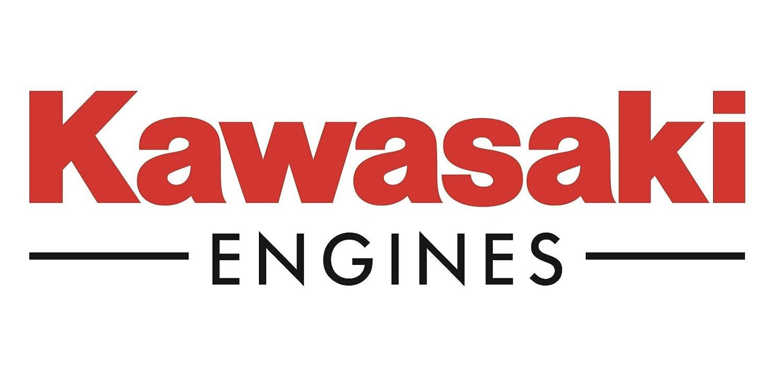 12 Pack Genuine Kawasaki 49065-7010 Oil Filter OEM