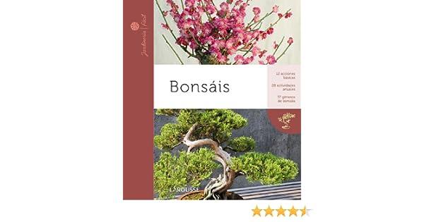 Bonsais Larousse - Libros Ilustrados/ Prácticos - Ocio Y Naturaleza - Jardinería - Colección Jardinería Fácil: Amazon.es: Aa.Vv.: Libros