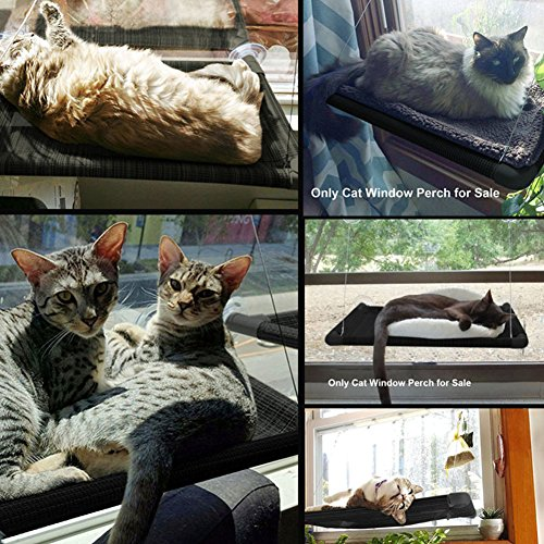 best window perch for your cat  any cat likes to enjoy the sun bath and cat hammock will be a good choice  window bed for the cat on the edge of the     cat bed window hammock perch kitty sunny seat cradle mat pet      rh   ebay