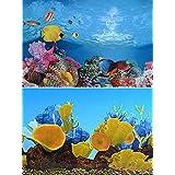 "9096 19.3"" x 48"" Double Sided Fish Tank Aquarium Background Colorful Fishes / Golden Mushroom"