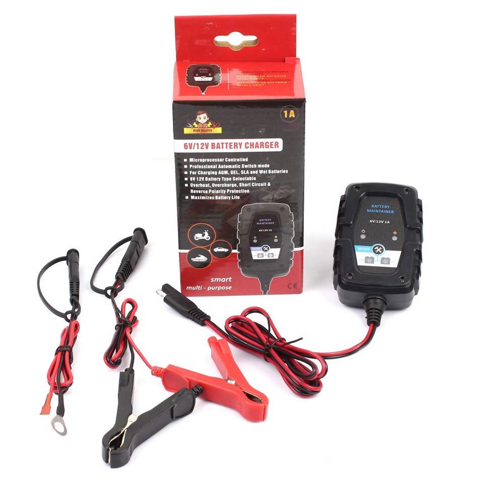 HobbyAnt FOXSUR - Cargador de batería inteligente automático de 6 ...