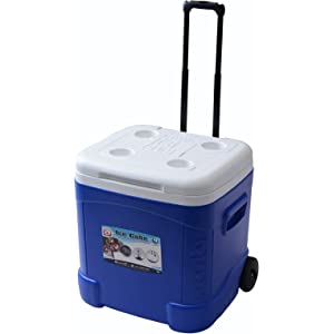 Igloo Ice Cube - Top Rated Coolers