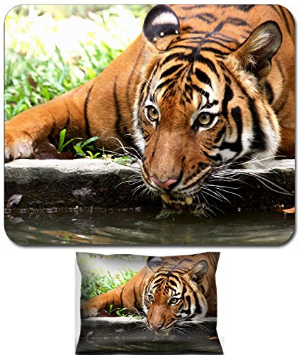 Refreshing Drink Design - Luxlady Mouse Wrist Rest and Small Mousepad Set, 2pc Wrist Support design IMAGE: 392932 taking a refreshing drink from a river moat to cool off