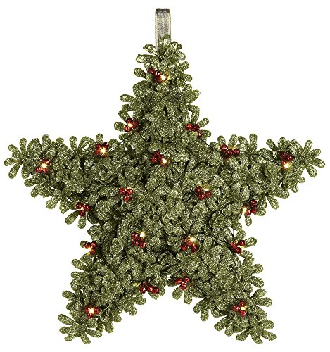 (Ganz Light Up Mistletoe Star Decor)