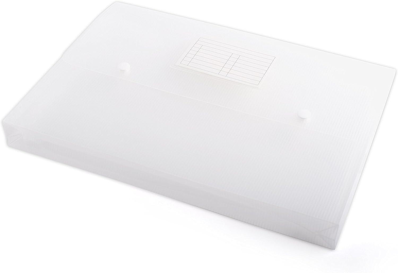 Sobre con botones ecológico/biodegradable, A4, 0,45 mm: Amazon.es ...