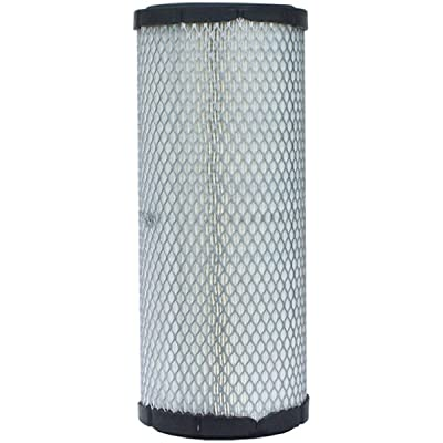 Luber-finer LAF8148 Heavy Duty Air Filter: Automotive