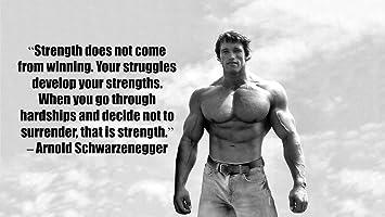 Arnold Schwarzenegger Inspiration Bodybuilding Poster 43 Inch X 24 Inch 24 Inch X 13 Inch