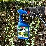 BioAdvanced 704710B Moss and Algae Killer