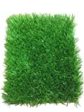 All Season Plush Artificial Grass - Synthetic Turf Grass For A Natural Grass Look (20' x 15')
