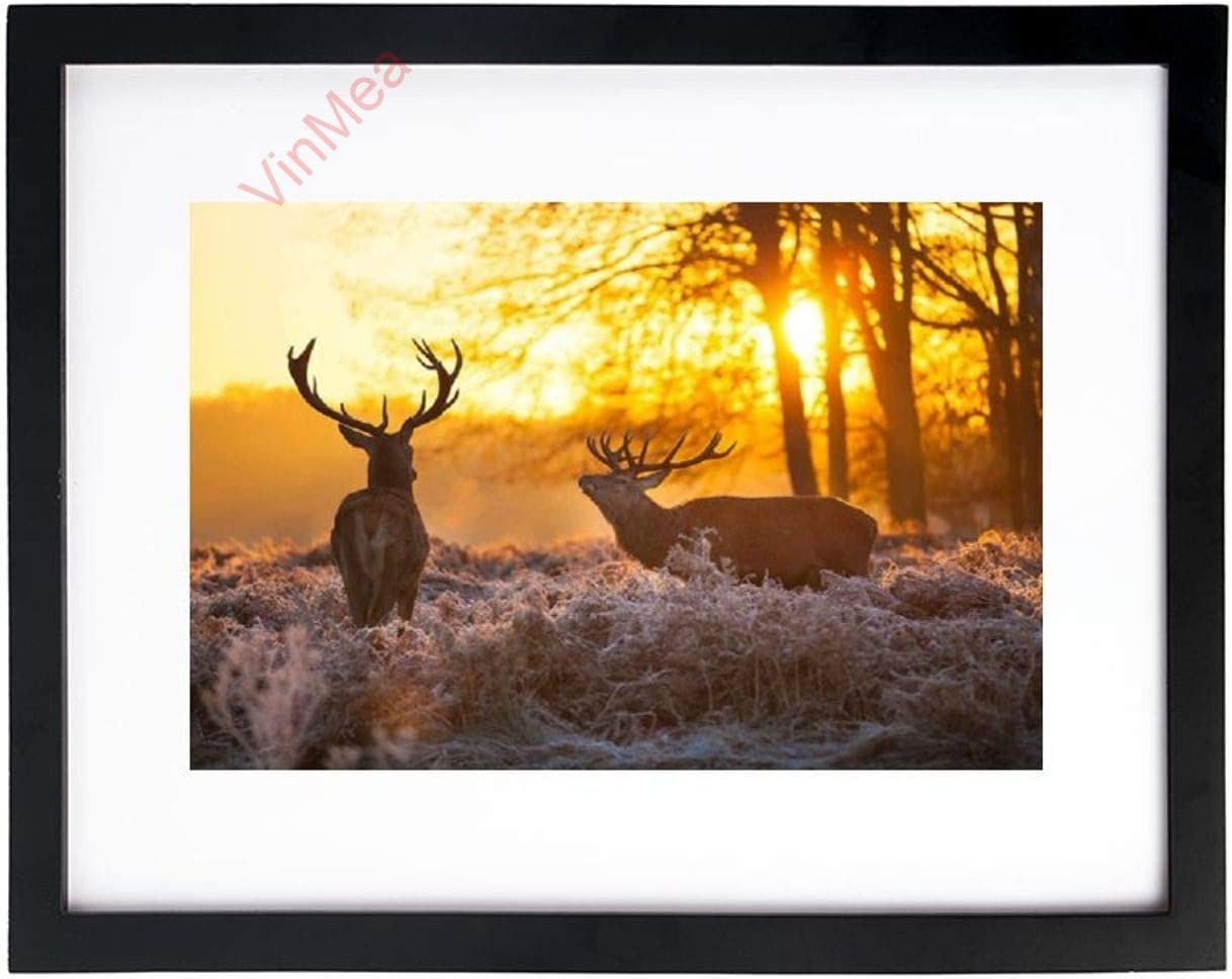 Art Print Wall Art Animal Deers in Autumn Sunrise Forest Wildlife Nature Seasonal Black And White Picture Frames With High Definition Glass,Home/Office Wall Art Decor Wooden Frames 12x16 Inches