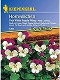 Viola x cornuta Hornveilchen Twix White Purple Wing