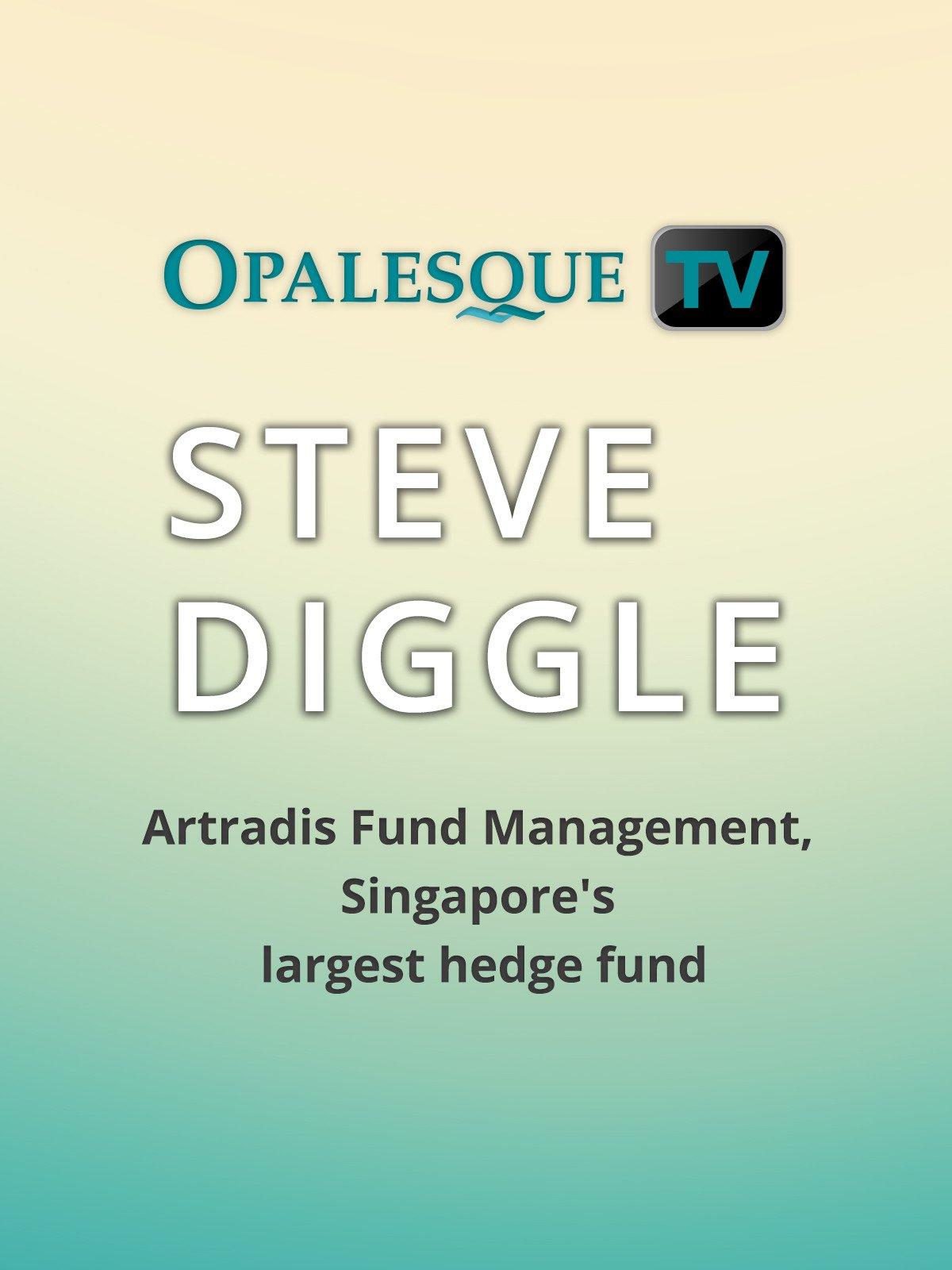 Amazon com: Watch Steve Diggle: Artradis Fund Management