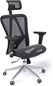 Halter Executive Mesh Office Swivel Chair with Adjustable Headrest, Armrests, Seat Height, and Backrest for Maximum Lumbar Support, Caster Wheels, Mesh Seat, Black