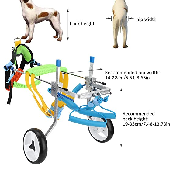 Pssopp Silla de Ruedas para Perros, Dos Ruedas Ajustables para Mascotas Silla de Ruedas Ligera Fácil Ensamble Carrito para Perros Patas traseras ...