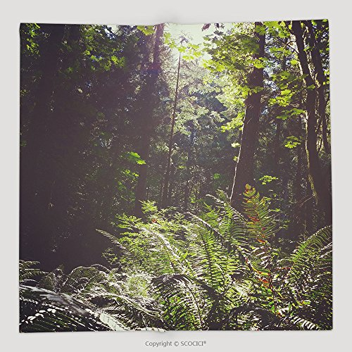 Custom Bc Vancouver Island Canada Scenic Lush Green Rainforest Landscape_580119930 Soft Fleece Throw - Bronte Canada