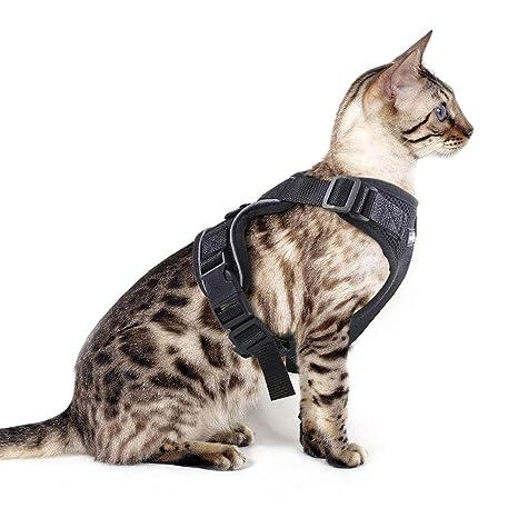 Eagloo Arnes Gato Pequeño Cómodo Material Chaleco Adapta a Su Perrito Chihuahua, Gatito Ajustable Cuello