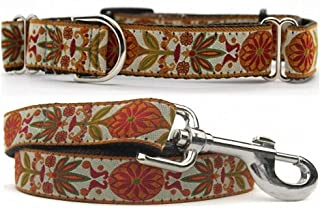 "product image for Diva-Dog 'Venice Ivory' 1"" Wide Chainless Martingale Dog Collar, Matching Leash Available"