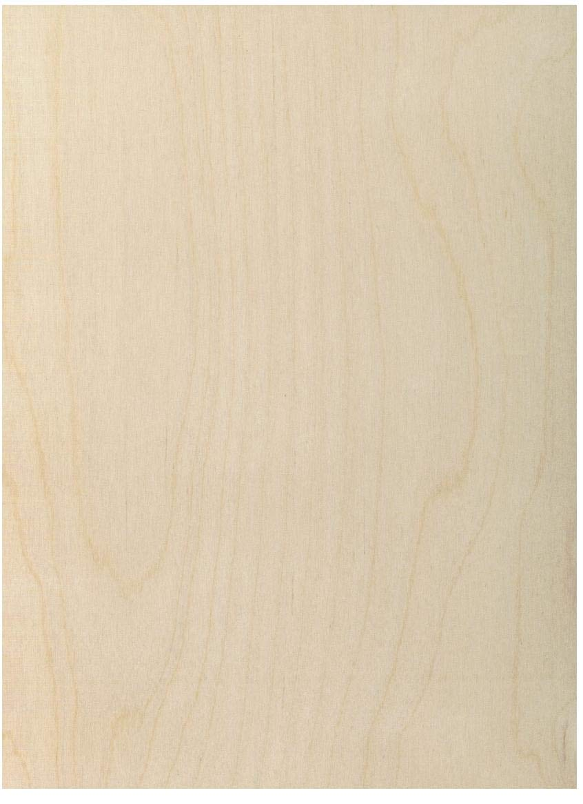6 mm 1/4'' X 12'' X 24'' Premium Baltic Birch Plywood - B/BB Grade - 12 Flat Sheets by Wood-Ever by Wood-Ever