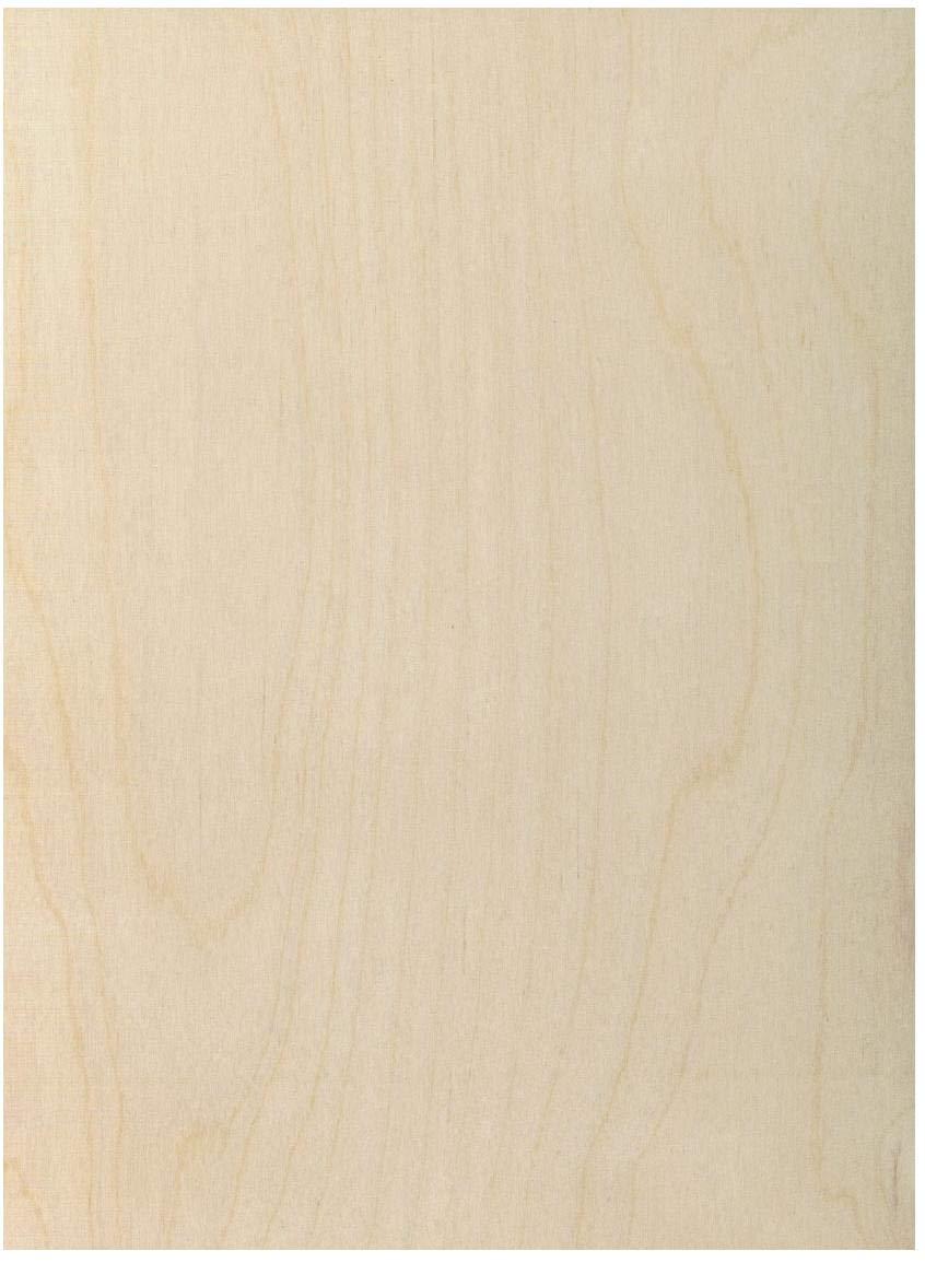 3 mm 1/8'' X 12'' X 24'' Premium Baltic Birch Plywood – B/BB Grade - 20 Flat Sheets by Wood-Ever