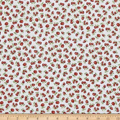 Cut N-dry Foam (Timeless Treasures Camp Cricket Mini Mushrooms Fabric, Foam, Fabric By The Yard)