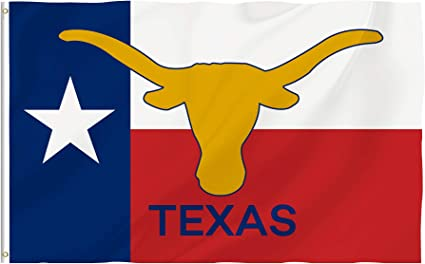 Amazon Com Bonsai Tree 3x5 Feet Texas State Flag Vivid Color And Fade Resistant And Double Sided Polyester Texas Longhorn Flags American States Home Decorations Garden Outdoor