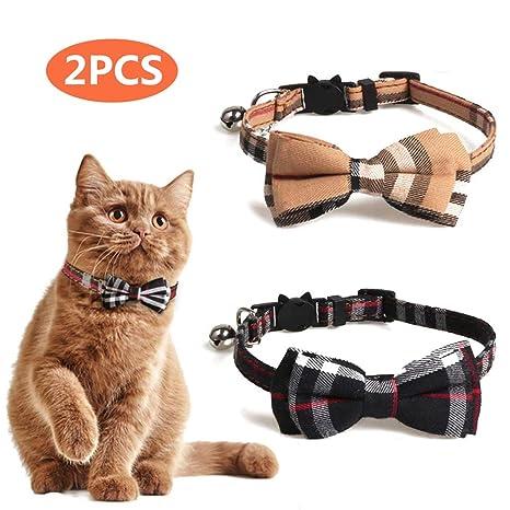 Amazon.com: Anning - Collar para gatito y algunos cachorros ...