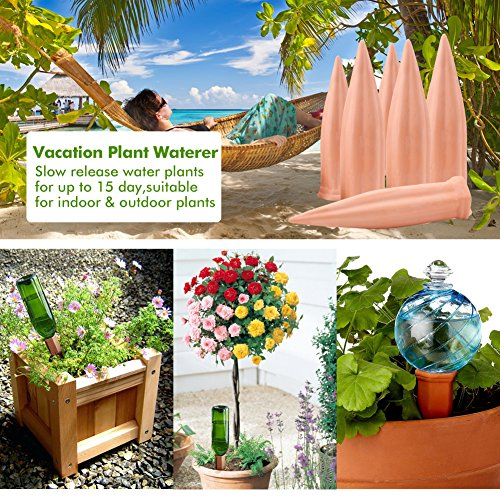 punada Plant Water Self Watering Spikes, Automatic Vacation Plant Watering Devices,Terracotta Wine Bottle Stake Set, Slow Release Self Irrigation Watering System-Perfect for Indoor Outdoor Plant (6)