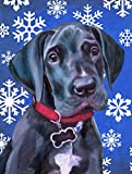Caroline's Treasures LH9586CHF Black Great Dane Puppy Winter Snowflakes Holiday Flag Canvas, Large, Multicolor Review