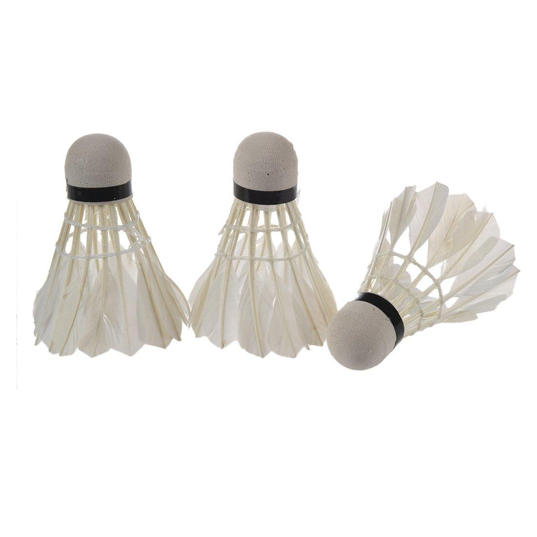 Badminton Volano - SODIAL(R) bianca Goose Feather Badminton Shuttlecock 3pz con Carboard Cilindro