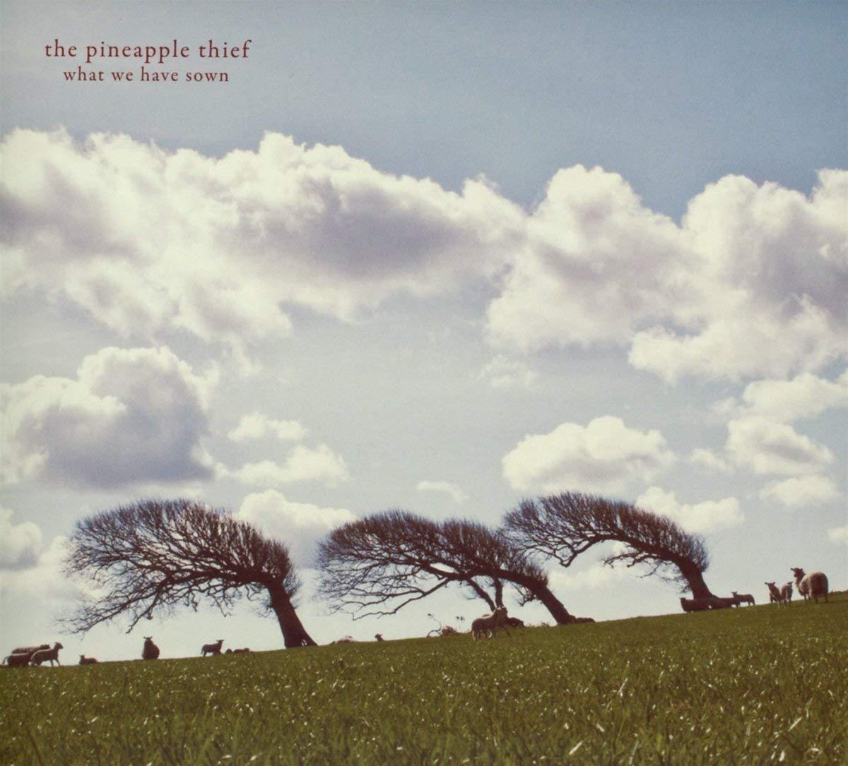 Vinilo : Pineapple Thief - What We Have Sown (LP Vinyl)